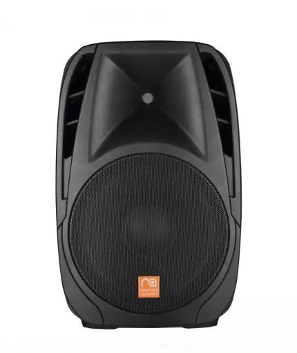 Maximum Acoustics PRO.15P