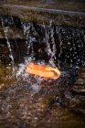 ANKER SoundСore Icon Orange 7